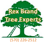 Rex Brand Tree Experts Logo